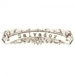 Salvador (Россия)